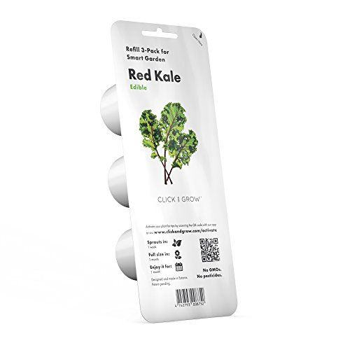Click Grow Smart Garden Refill Capsules Red Kale 3 Pa Https Www Amazon Com Dp B071vnptyb Ref Cm Sw R Pi Dp U X Nqqtab Smart Garden Kale Plant Red Kale