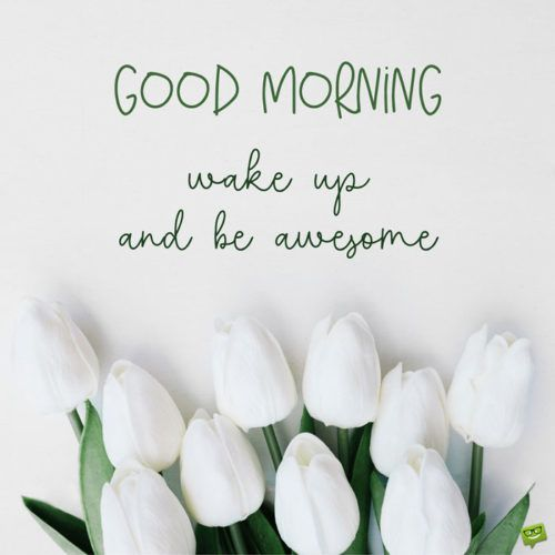 Good Morning. Wake up and be awesome!