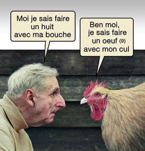 Quand est ce qu'une poule a le plus mal au cul ? ?? Quand elle passe du coq à l'âne ! !!!! est une image drôle publiée le 5 Novembre 2018 par ROUGETNOIRS. Que pensez-vous de cette image drole insolite ?