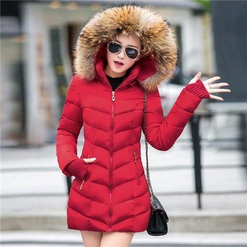 Fresh Winter Jackets
