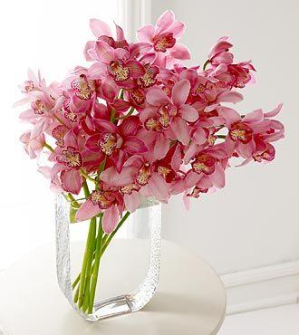 I love cymbidium orchids