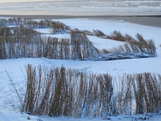 Schoorl Netherlands  city photos gallery : Schoorl aan Zee The Netherlands | Winter Wonderland | Pinterest | The ...