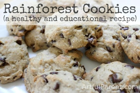 Rainforest Cookies :: A Healthy Recipe for Kids (and a way to learn about the rainforest through the many ingredients used that come from the rainforest)