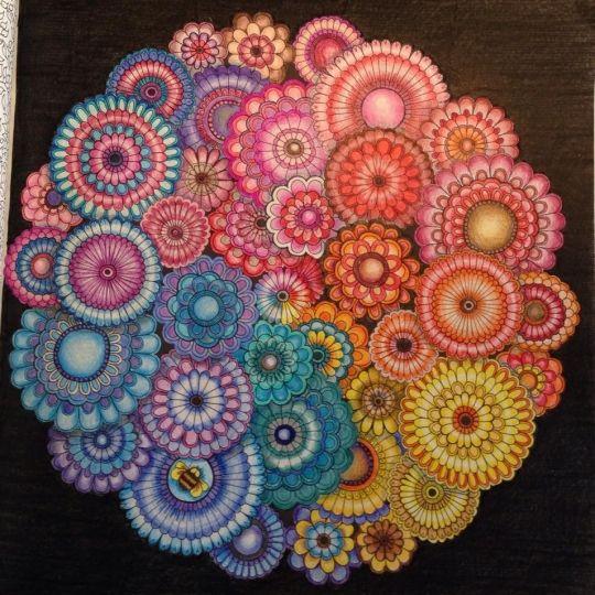 Secret Gardens Mandalas And Galleries On Pinterest