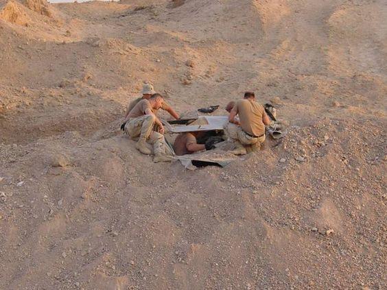 전투기 수확 > 다나와 커뮤니티 ::행복쇼핑의 시작! 다나와(가격비교)
