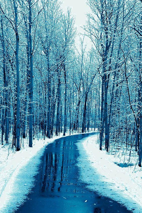 44 Winter Iphone Wallpaper Ideas Winter Backgrounds Free Download Iphone Wallpaper Winter Winter Background Winter Snow Wallpaper