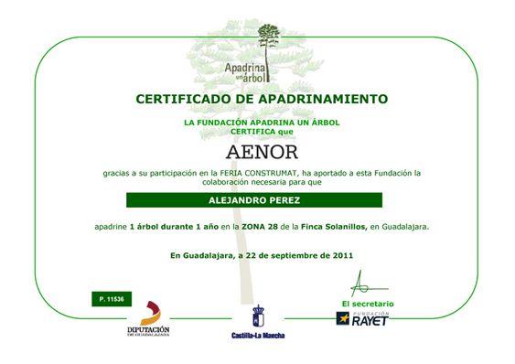 2012 Apadrinar Apadrinamiento para Plantar Arboles con Aenor ONG RSE para AlejandroPI Alejandro Perez Irus su Medico Inmobiliario en Bienes Raíces