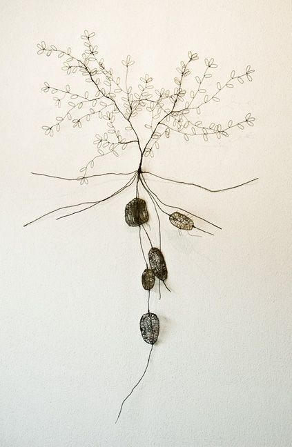 Ben Coutouvidis (b 1970)  Plant with roots and tubers  Wire sculpture