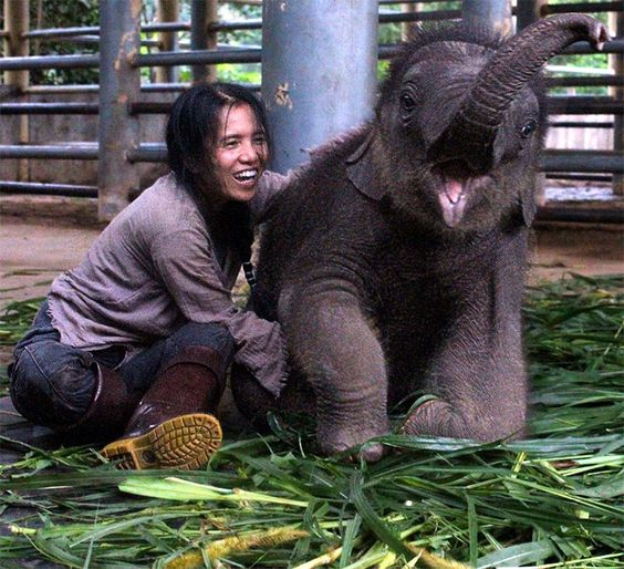 15 fotos incríveis da Tailândia para você se apaixonar