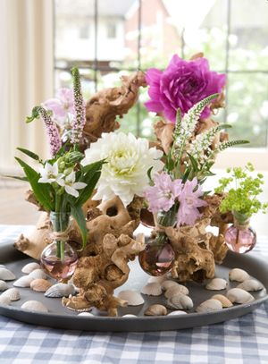 Je eigen pluktuin aanleggen! De hele zomer boeketten uit eigen tuin. #pluktuin #tuinieren #zaaien #duizendblad #vrouwenmantel #anemoon #cosmea #dahlia #anjer #zonnebloem #lelie #lupine #pioenroos #phlox #zinnia