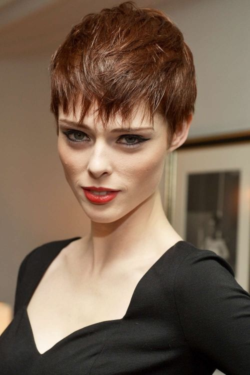 Dunkle kurze haare