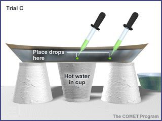 Science lesson - energy transfer-heat convection.  either to do or to show the animation