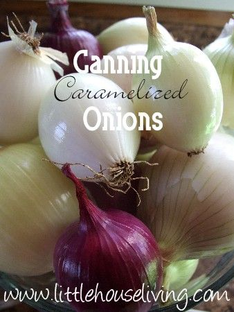 Canning Caramelized Onions