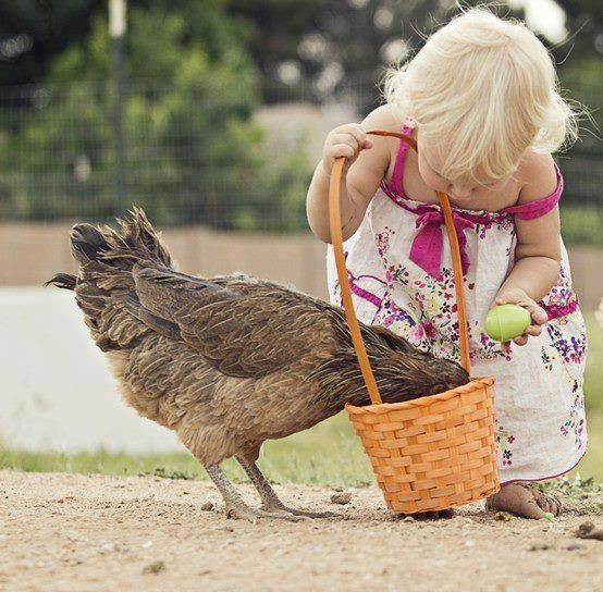 """You haven't got my egg in there have you?"". Easter egg hunt."