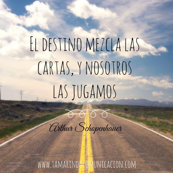 El destino mezcla las cartas, y nosotros las jugamos - Arthur Schopenhauer #frases #marketing #comunicacion #Destino #Vida #Marketing #quotes