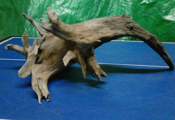 Aquarium driftwood drift wood taxidermy decor craft decor for Aquarium wood decoration
