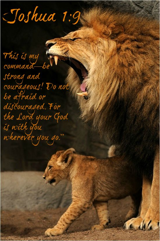 """Joshua 1:9 """"This is my command—be strong and courageous! Do not be afraid or discouraged. For the Lord your God is with you wherever you go."""""""