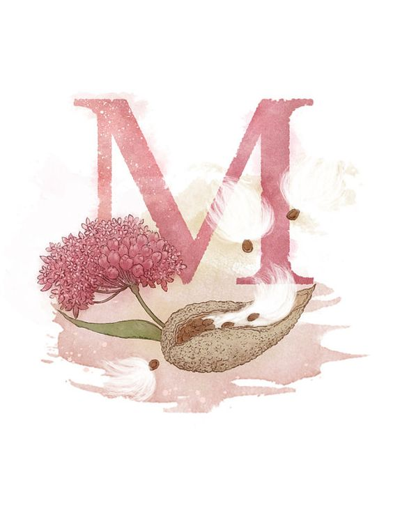Letter M Milkweed Nature Theme | M is ... | Pinterest ...