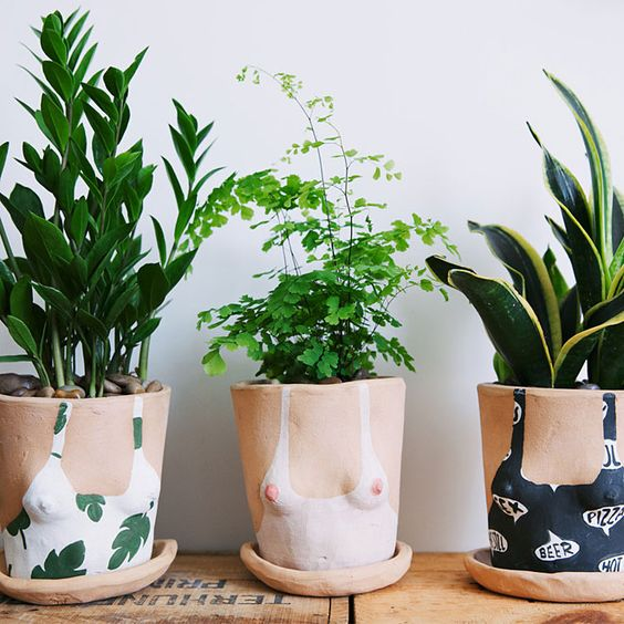 lady planters, by 'the sill':