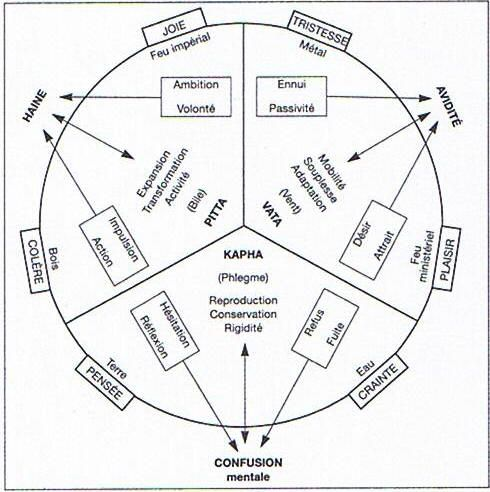 Jung Alchimiste 710bc1290ab575eb825c0810de016c7d