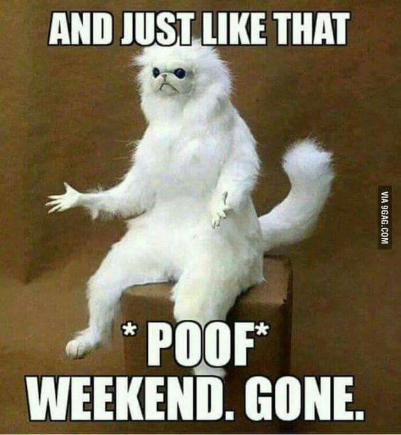 Weekend humor: