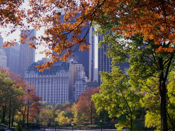 It's Autumn and how beautiful does New York look. We are currently recruiting IT Audit Managers for a Big 4 firm in this magnificent city. To apply or for more information send your CV to mail@thinkgr.com
