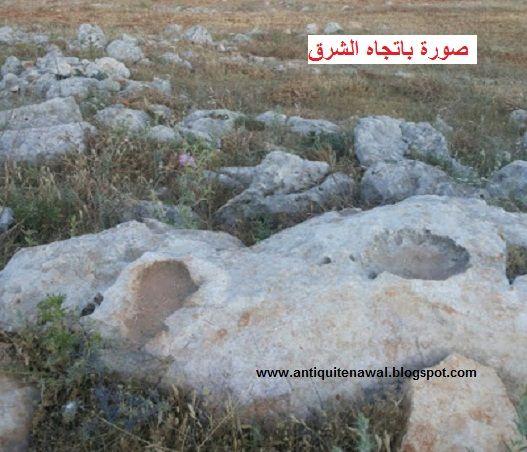 اشارة سمكة حفر وبجانبها على نفس الصخرة جرن صينية