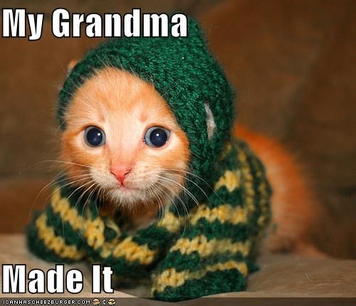 Grandma made a sweater