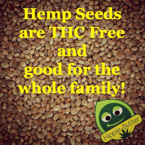 Hemp Seeds are THC Free and good for the whole family! Please RePin It
