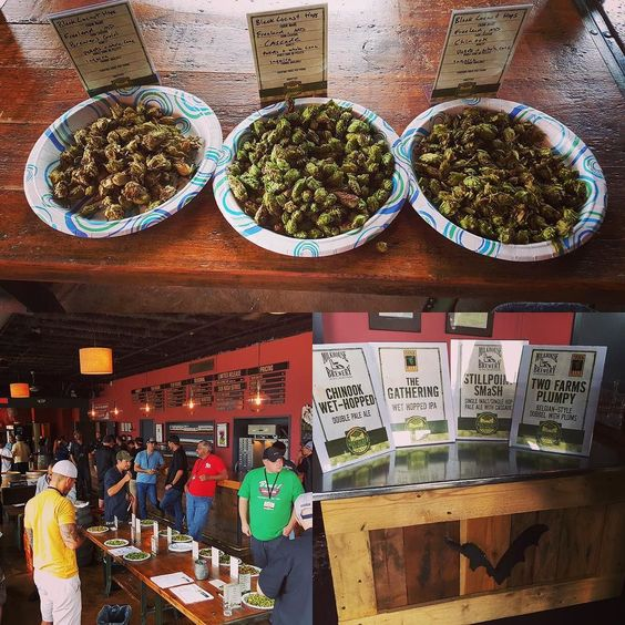 Just this morning we hosted the third annual Maryland Hop Market which gave six local growers the opportunity to showcase their hops in front of 22 Maryland breweries.  We saw some fine-looking Cascades and Chinooks that just may find their way into our Secret Stash Harvest Ale. Because local is as local does. by flyingdogbrewery