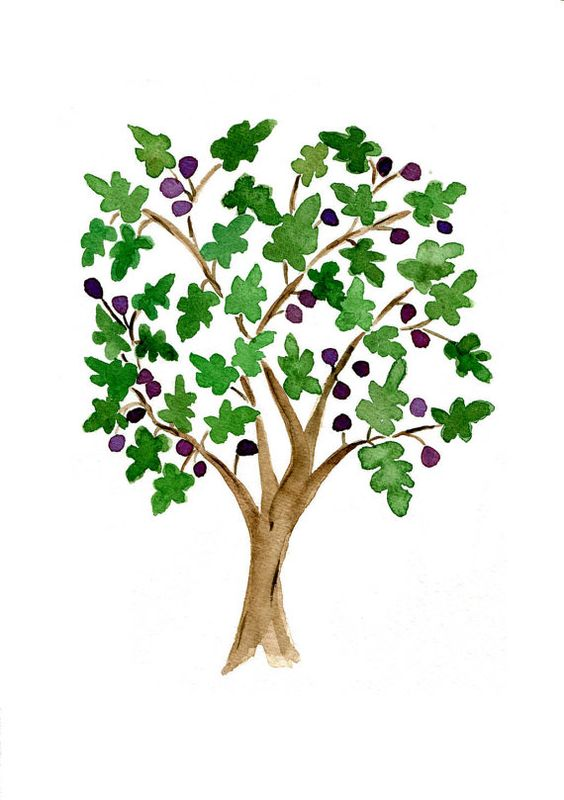The Fig Tree Print of  original watercolor painting in Green and purple , Folk art inspired, Mediterranean, mountain of spices,mothers day:
