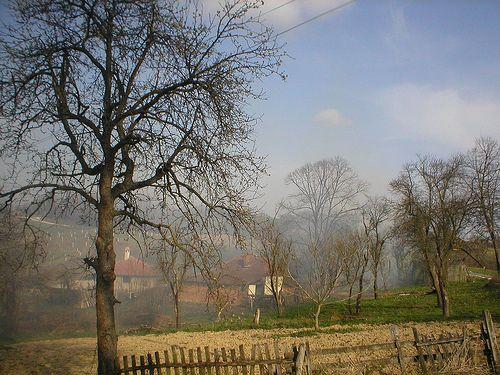 Selo Tresnjevica