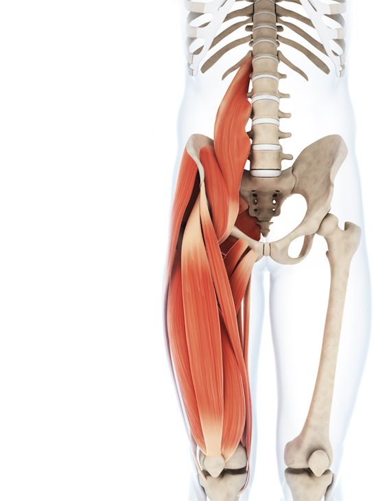 Tight hamstrings contribute to back pain. Avoid dangerous stretches. Many hamstring stretches actually worsen the pain and risk of back injury. Learn this very effective and safe hamstring stretch.