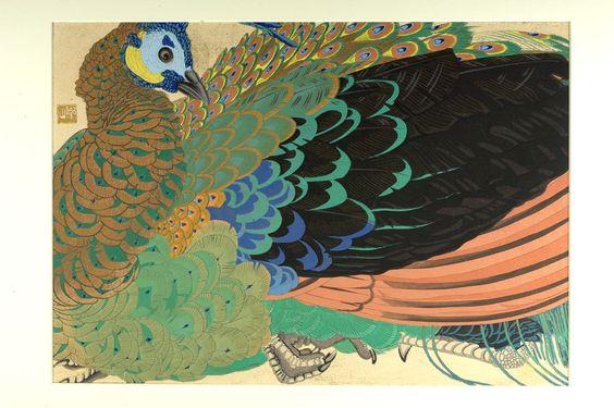 Peacock (Shoka Roshûkujaku No Osu) / Tsuchiya Rakuzan, Japanese ( born 1886)