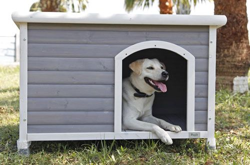 Top 10 Best Heated Outdoor Dog Houses For Sale Reviews In 2020 Dog House For Sale Dog Houses Dog House