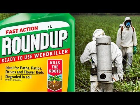 Judge REFUSES To Let Attorneys Discuss Monsanto's Disgusting Conduct During Roundup Trial - YouTube
