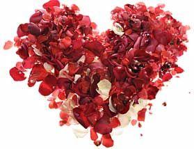 Bij een kosteloze huwelijkssluiting trouwen horen geen rozenblaadjes