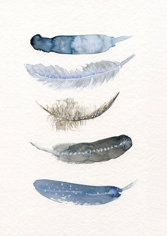 Feather art work - 5 Feathers art print from original watercolor painting by Annemette Klit - art work of bird feathers - giclee artwork:
