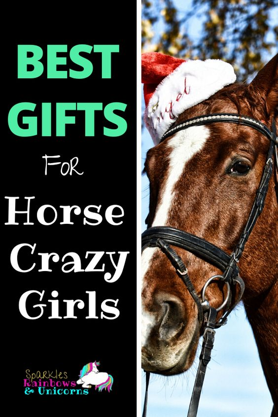 Find the perfect gifts for that horse crazy girl in your life. From toys to games to clothes to decor. I have listed my favorites!