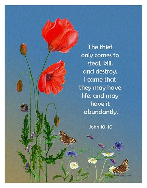 John 10: 10 The thief comes only to steal and kill and destroy; I came that they may have life, and have it abundantly.