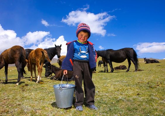 Horse Milk:  a popular Kyrgyz beverage is kymyz, a slightly alcoholic drink made by fermenting mare's milk. This drink is considered to be a signature drink of Euroasian nomadic culture, as it is also consumed in Kazakhstan and Mongolia.