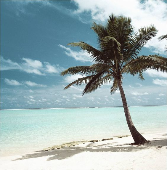 Margarita Island Venezuela....beautiful white sand beaches....and you can't go wrong with a name like Margarita!