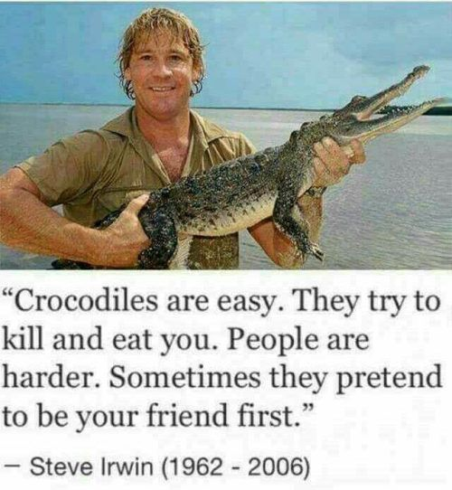 65 Of Today S Freshest Pics And Memes Steve Irwin Aussie Memes Crocodiles