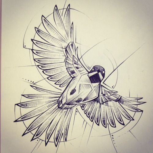 bird silhouette | potential arm tattoo...draw, color, cut ...