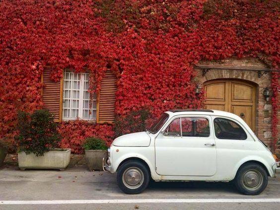 Autunno in Toscana - foto di Sara Monnecchi
