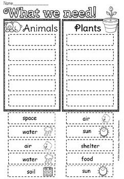 First Grade Science Worksheets For Grade 1 Animals