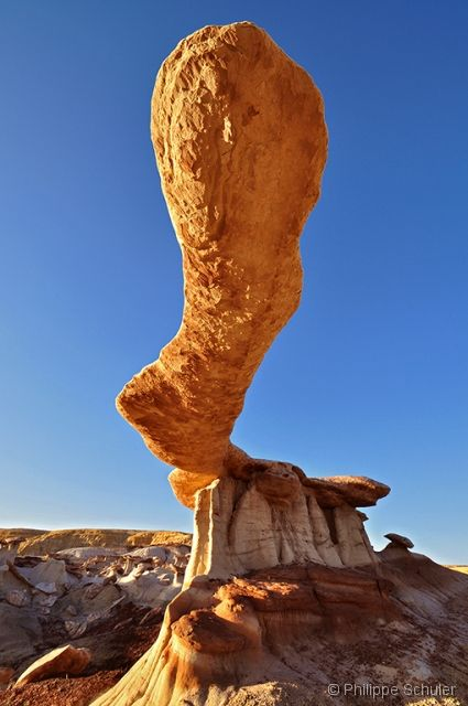 King of Wings rock formation in the Bisti Badlands of New Mexico - photo by Philippe Schuler