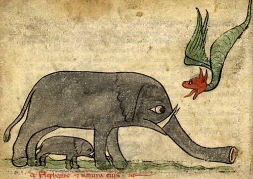 Elephant protecting small elephant against a dragon. Bibliothèque Nationale de France, lat. 6838B, Folio 4v: