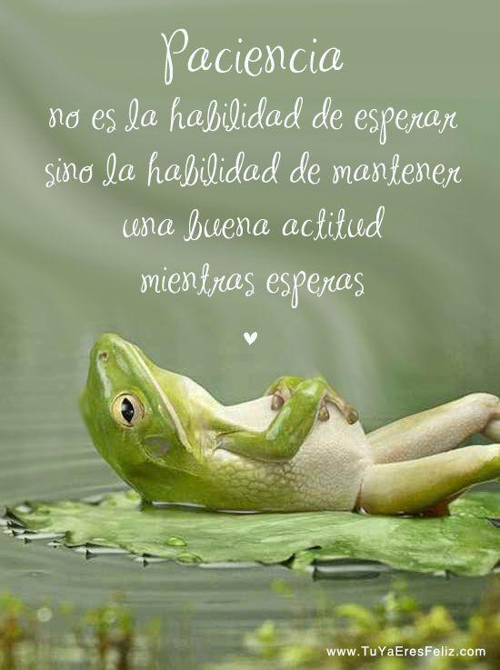 @puntodenfoque La #meditación nos entrena a estar en el momento presente, ayudando a desarrollar la paciencia y a resolver problemas de una forma más calmada.