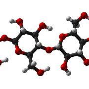 Fibras químicas y artificiales Son las más baratas y prácticas, algunas incluso tan suaves como las naturales.